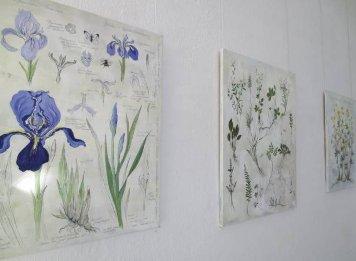 gratis SEEX Botanisk Have Odense